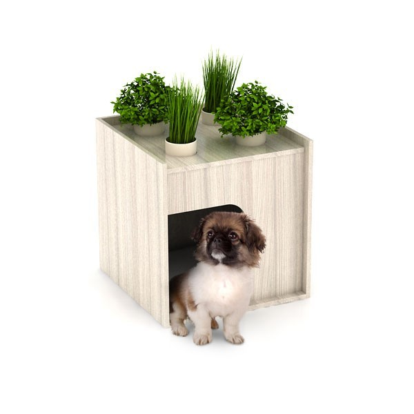 Niche chien originale et design litiere chat luxe de designer decocrush - Niche chat design ...